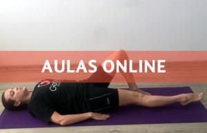 Aulas Online Fisioterapia